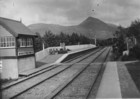 Ballynahinch railway station_thumb.jpeg